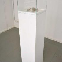 ruins-vitrine-klein